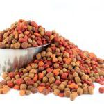 Как разобраться в ассортименте кормов для домашних животных
