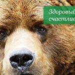 БЕР – ветклиника в г Днепропетровск с 10 летним стажем работы