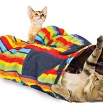 Какие товары нужны для кошки?